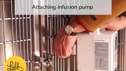 Veterinary stainless steel cages – Infusion Pump Support